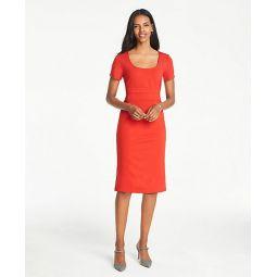 Petite Seamed Waist Ponte Sheath Dress