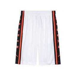 Air Jordan Dri-FIT Basketball Shorts