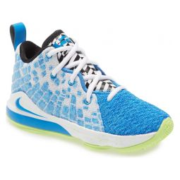 LeBron XVII Basketball Shoe