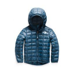 ThermoBallu003Csupu003Eu003Cu002Fsupu003E Eco Packable Jacket
