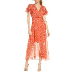 Esi Floral Georgette Dress