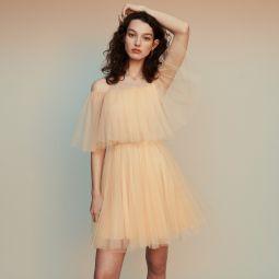 ROSSINI Bare-shouldered tulle dress