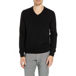 Everyday Cashmere Regular Fit V-Neck Sweater