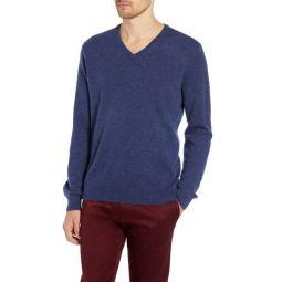 Everyday Cashmere Regular Fit V-Neck Sweater